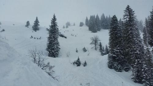 Skiroute Gauertal (5)