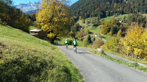 Mountainbikerunde (15)