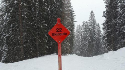 Skiroute Gauertal (9)
