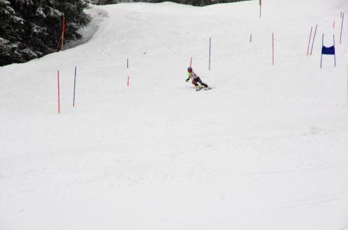 Skitest (11)