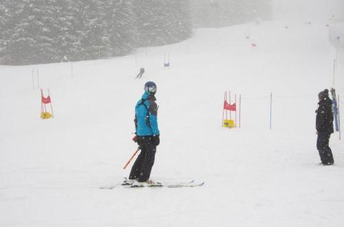 Skitest (15)