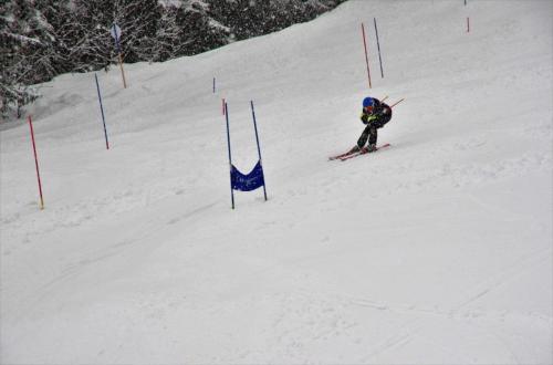 Skitest (18)