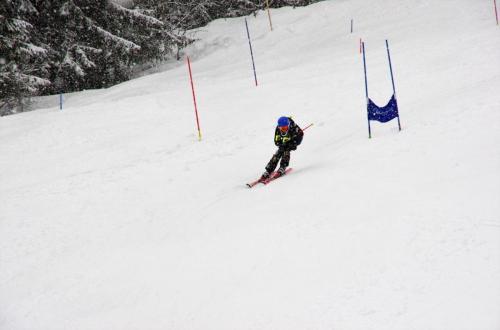 Skitest (19)