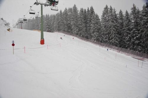 Skitest (2)