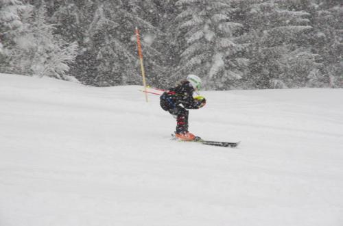 Skitest (20)