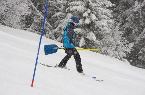 Skitest (22)