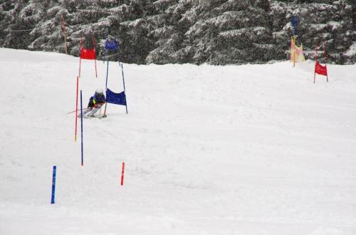Skitest (24)