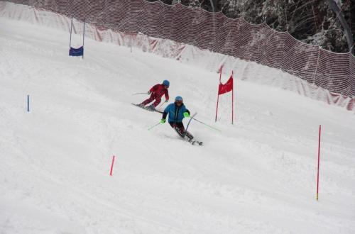 Skitest (3)
