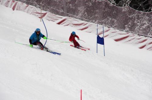 Skitest (4)