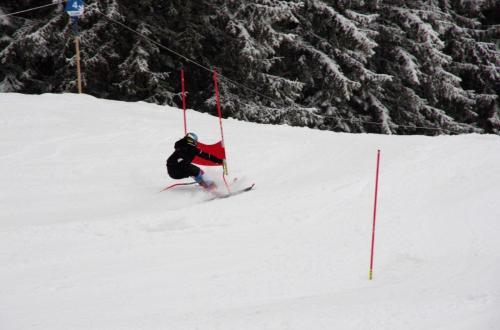 Skitest (5)