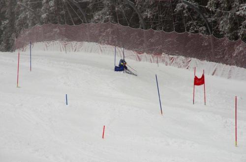 Skitest (6)