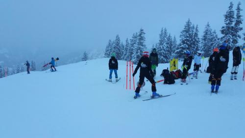 Slalomtraining (1)