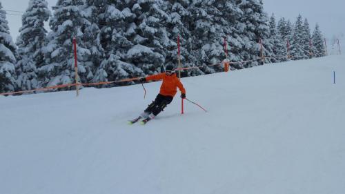 Slalomtraining (10)