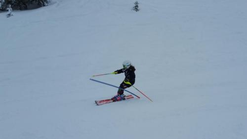 Slalomtraining (20)