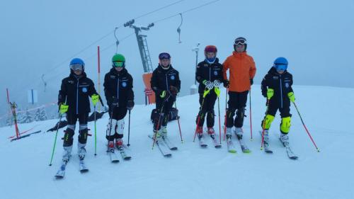 Slalomtraining (3)