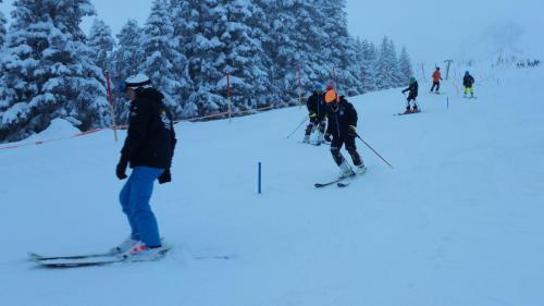 Slalomtraining (4)