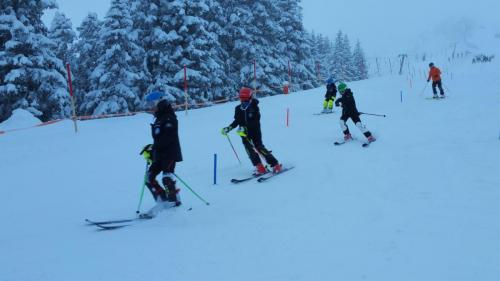 Slalomtraining (5)