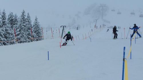 Slalomtraining (6)