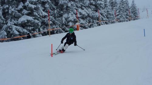 Slalomtraining (7)