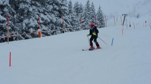 Slalomtraining (8)