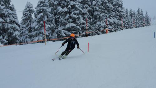 Slalomtraining (9)